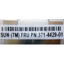 Серверная память SUN (FRU PN 371-4429-01) 4096Mb (4Gb) DDR3 ECC в Электрогорске, память для сервера SUN FRU P/N 371-4429-01 (Электрогорск)